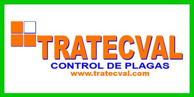 tracteval-nuevo